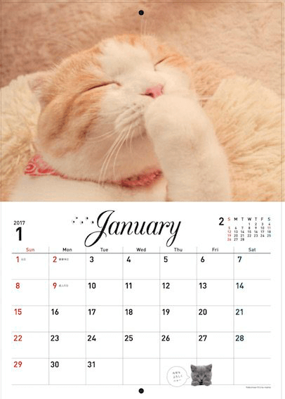 2017年スターねこカレンダーの写真1