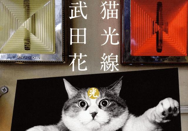 武田花さんの写真集「猫光線」の写真展が森岡書店銀座店で開催