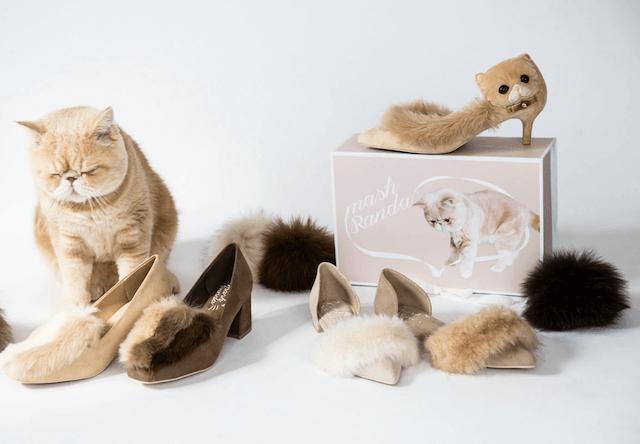 ランダ×人気猫のマッシュがコラボした可愛いパンプスが発売