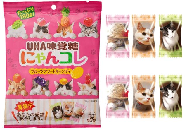 猫キャンディ「にゃんコレ」が発売!包装用のネコ写真も募集中