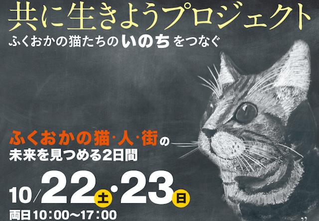 大丸福岡店のパサージュ広場で10/22から猫の写真展などを開催