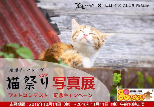 尾道の猫フォトコンテストの入賞作品展が、東京丸の内で開催