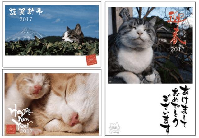 岩合光昭さんの猫写真が年賀ハガキに!郵便局でサイン会も