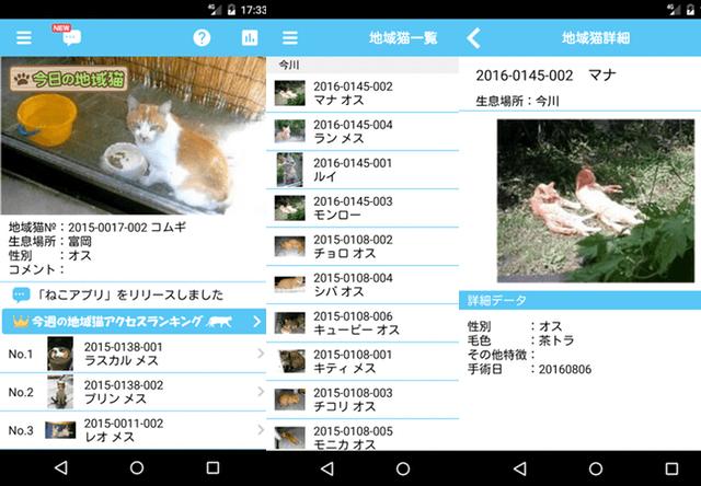 浦安市の地域猫を共有するアプリ「ニャンだぁ!らんど」