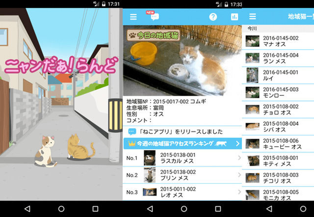 地域猫を共有するアプリ「ニャンだぁ!らんど」