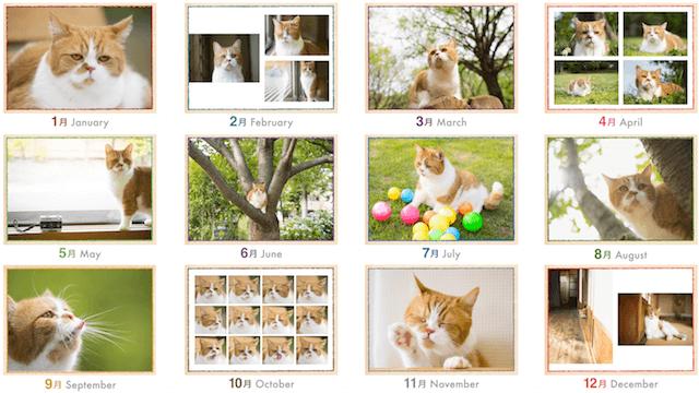 ふてネコ春馬の2017年カレンダー写真1