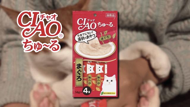 猫のオヤツ「CIAOちゅ~る」のテレビCM