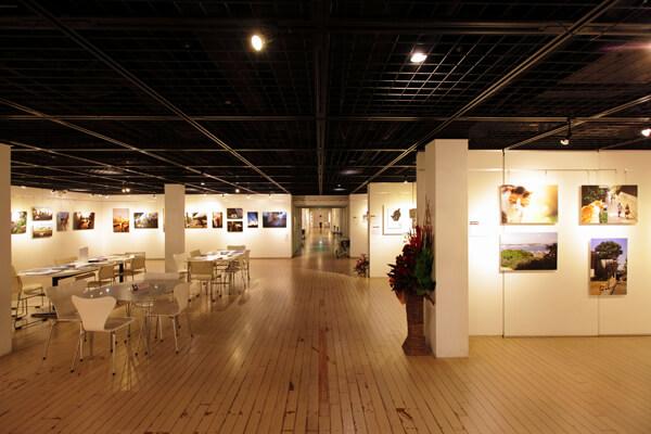 横浜赤レンガ倉庫 ねこ写真展2015の様子