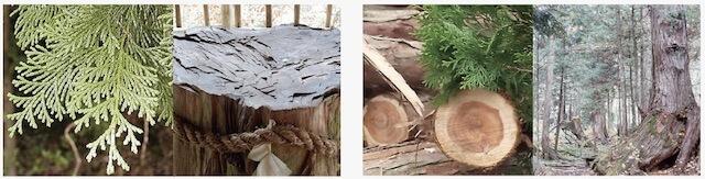 人間にもプラス効果を期待できる天然木曽ヒノキを使用したペット用の消臭除菌スプレー