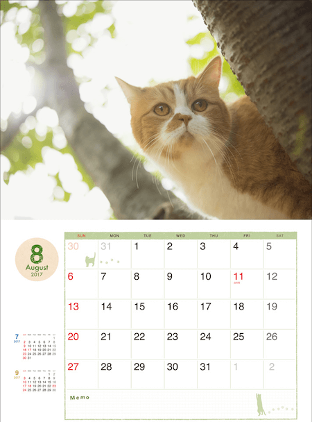 ふてネコ春馬の2017年カレンダー写真3