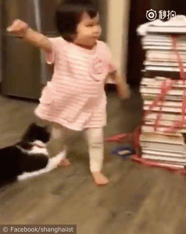 女の子を転ばせる猫の動画、女の子の足に手を掛ける猫