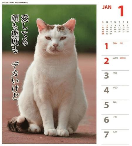 猫カレンダー 猫川柳