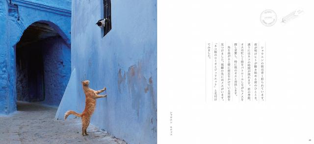 写真集「ネコへの恋文」のイメージ2