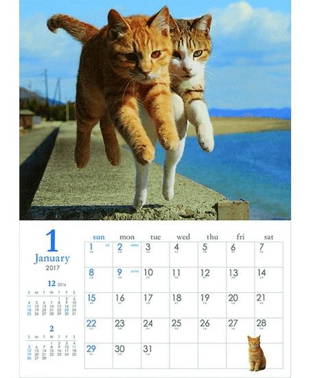 猫カレンダー 飛び猫