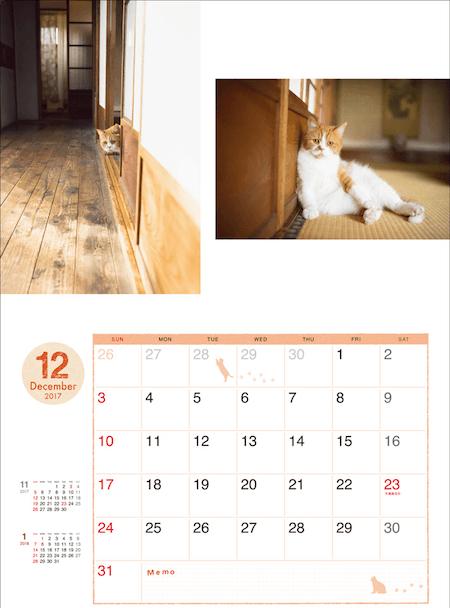 ふてネコ春馬の2017年カレンダー写真5