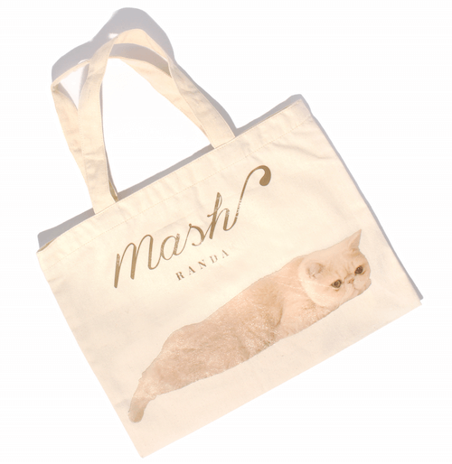 人気猫マッシュとコラボしたシューズバッグ