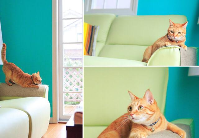 フェリシモ猫部のソファや椅子をカバーする爪とぎシート