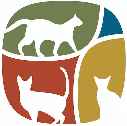 猫専門動物病院「動物病院京都 ねこの病院」のロゴ