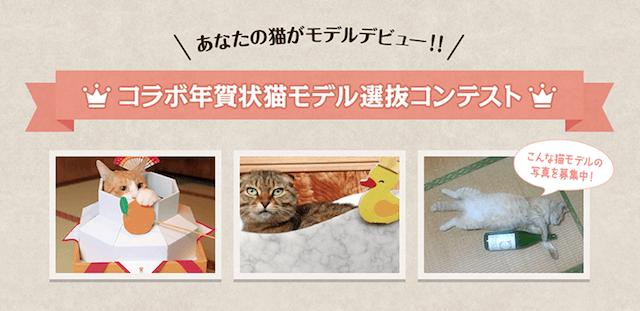 コラボ年賀状猫モデル選抜コンテスト