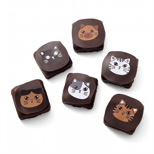 ヤン・プロット ねこチョコのチョコレート