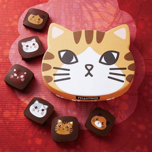 ヤン・プロット ねこボックスチョコのチョコレート