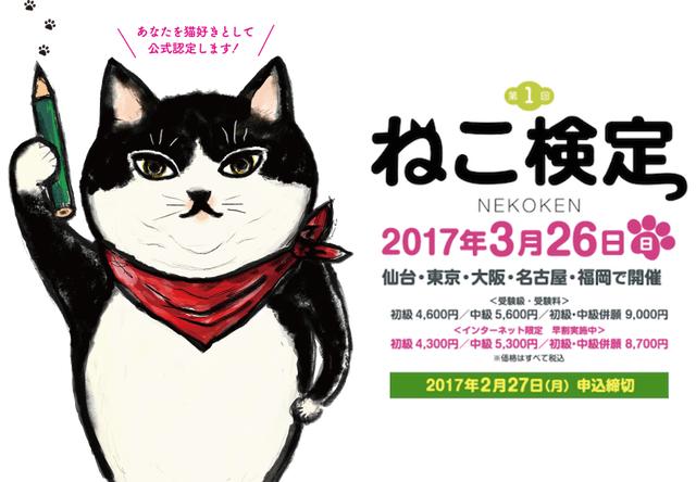 猫好きなら受けてみたい!第1回ねこ検定が2017年3月に仙台・東京・名古屋・大阪・福岡で開催