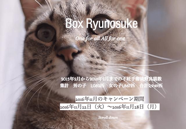 竜之介動物病院、11/22〜野良猫の不妊手術を無料で実施