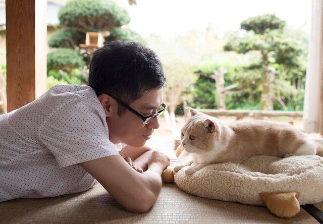 映画「ねこあつめ」の主演を務める伊藤淳史さんと、映画に登場する猫