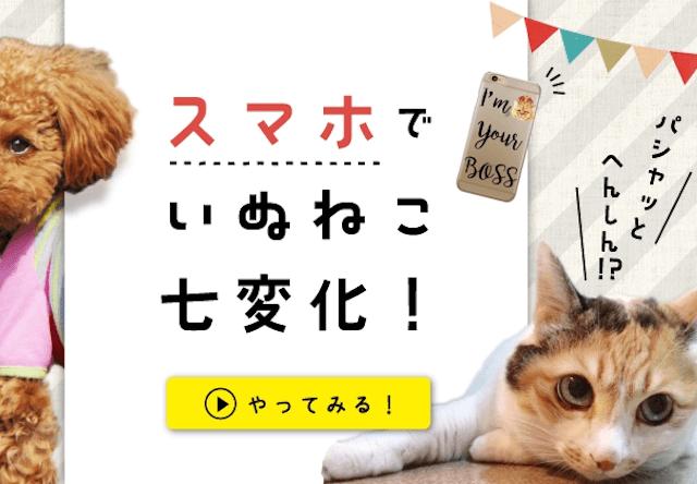 愛猫の写真でiPhoneケースを作れる、いぬねこ七変化キャンペーン開催中