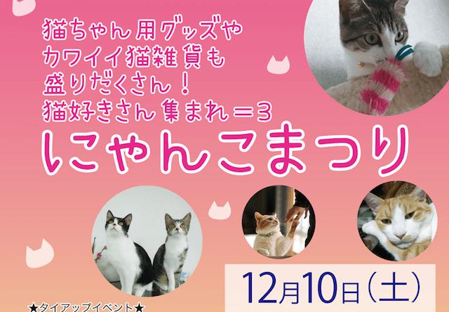 ハウスクエア横浜で猫好きのためのイベント「にゃんこまつり」が開催