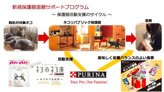 新規保護猫里親サポートプログラムのイメージ図