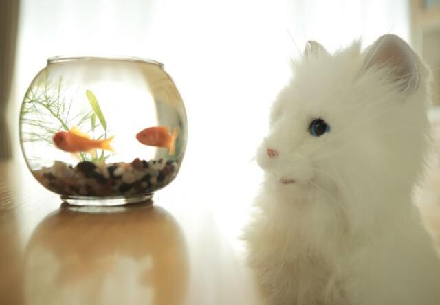 猫型ロボット「夢ねこプレミアム」