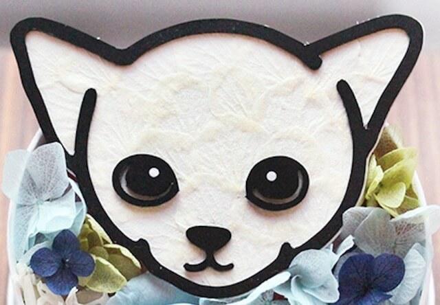 猫の顔が花びらで作られているプリザーブドフラワー