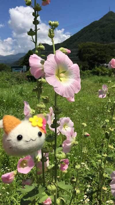 羊毛フェルトの猫ぬいぐるみ「たびにゃんころ」の風景写真1