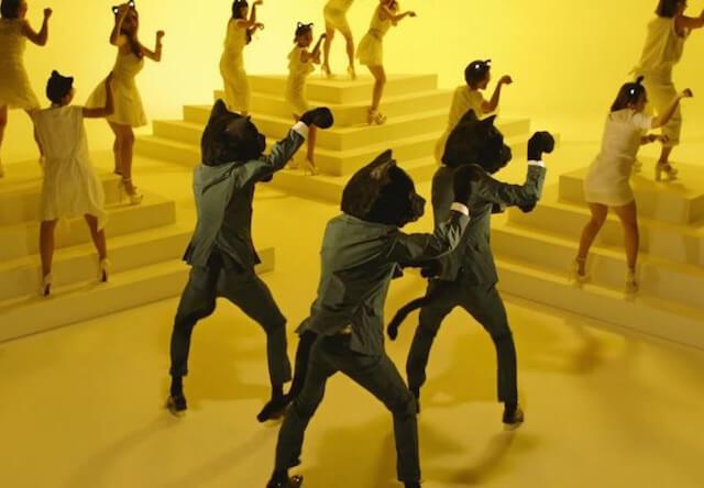 ヤマト運輸が公開した「猫ふんじゃった」ミュージックビデオのダンスシーン写真2