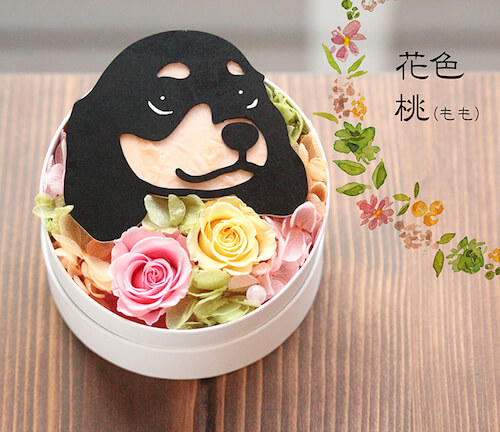 紅梅×桃×子犬ダックス ブラックタンのプリザーブドフラワー「Animal Candy」