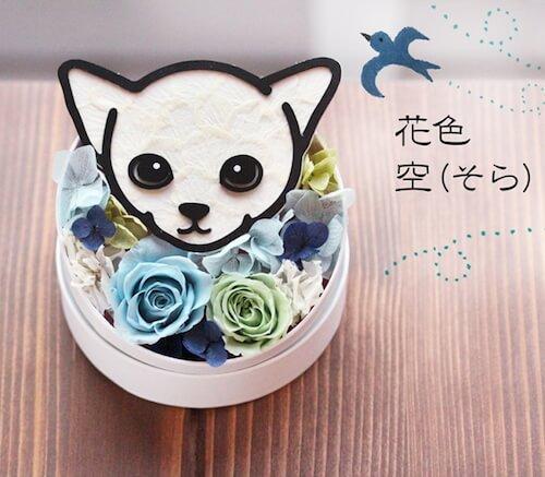 空×子猫のプリザーブドフラワー「Animal Candy」