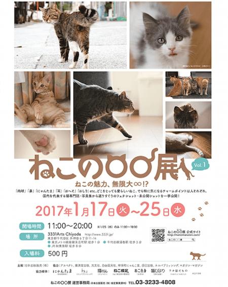 猫のフェチ写真を集めた展示会「ねこの〇〇展(ねこのまるまるてん)」