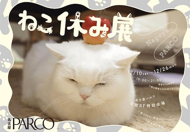 来場者10万人超えの猫イベント「ねこ休み展」名古屋パルコで開催