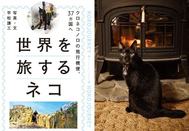 世界を旅するネコ「ノロ」の旅行記、番外編がWEB連載を開始