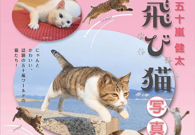 飛び猫の写真家・五十嵐健太氏、四日市の近鉄百貨店で写真展を開催