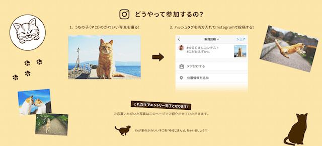 愛猫自慢のフォトコンテスト応募方法