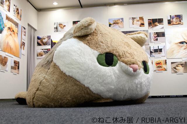 しょんぼり顔の猫、ふーちゃんの巨大ぬいぐるみ