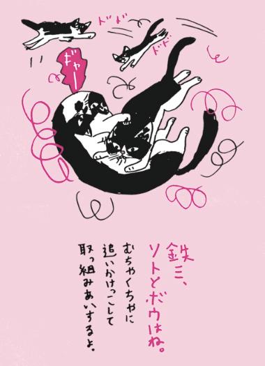 ミロコマチコさんの猫本「ねこまみれ帳」のイラスト