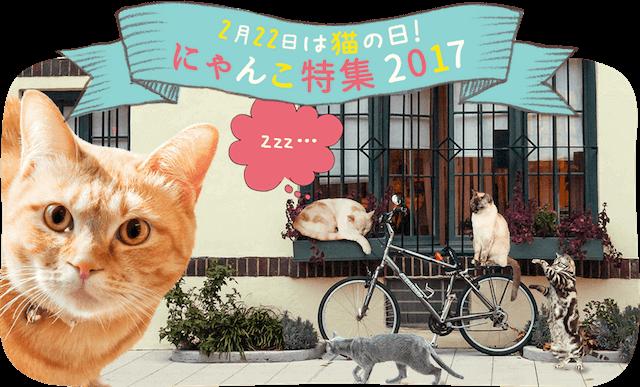 動画サービスのニコニコ、猫コンテスト2017を開催中