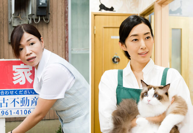映画「ねこあつめの家」追加キャストに木村多江&大久保佳代子