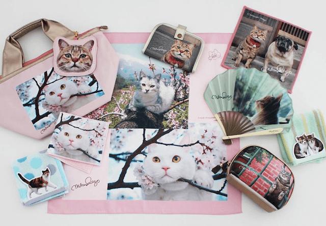 猫グッズブランド「岩合光昭のねこ」が登場!全国の百貨店で発売