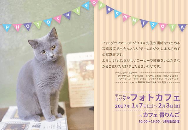 錦糸町の「カフェ青りんご」で、猫と花の写真展が開催中