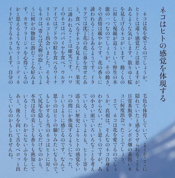 雑誌「SINRA(シンラ)」3月号、岩合光昭さんのエッセイ詳細