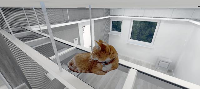 下から猫の肉球が見える空中キャットウォーク
